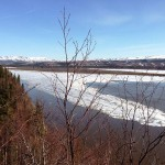 Kusko River Conditions At Napaimute & Aniak - May 20