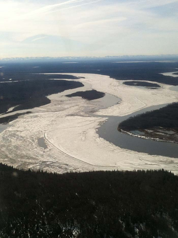 Looking towards Aniak from Birch Tree Crossing.  River Watch photo.