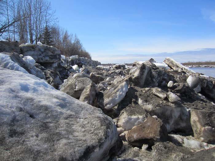 A close-up of the ice from the other side of the slough last year.