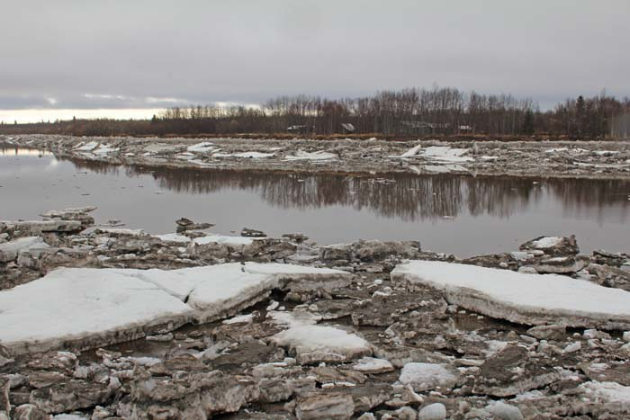 Last year the east bank of the slough had more ice than most people could remember.