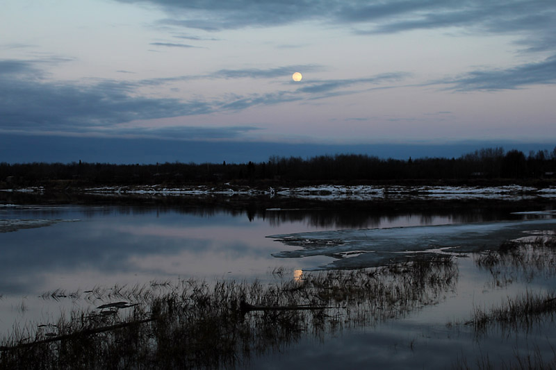 The full moon over the tranquil slough.
