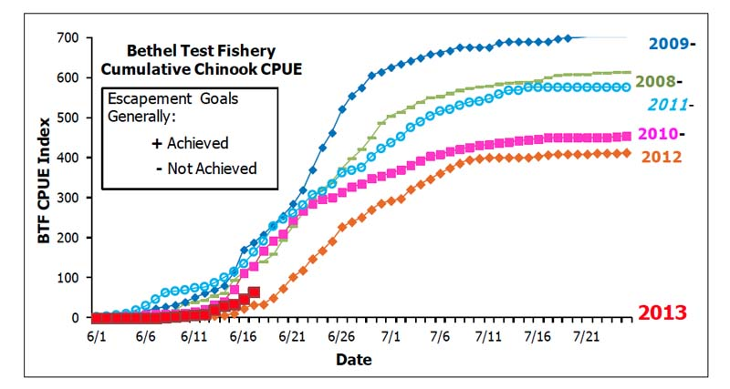 Cumulative Catch Per Unit Effort (CPUE) of the Bethel Test Fishery