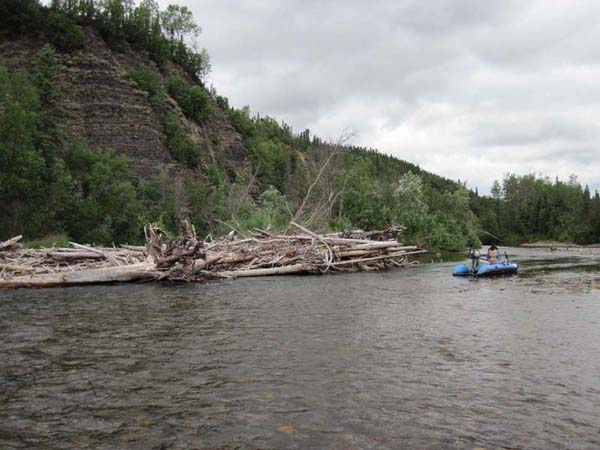 Large woody debris at the head of a side channel