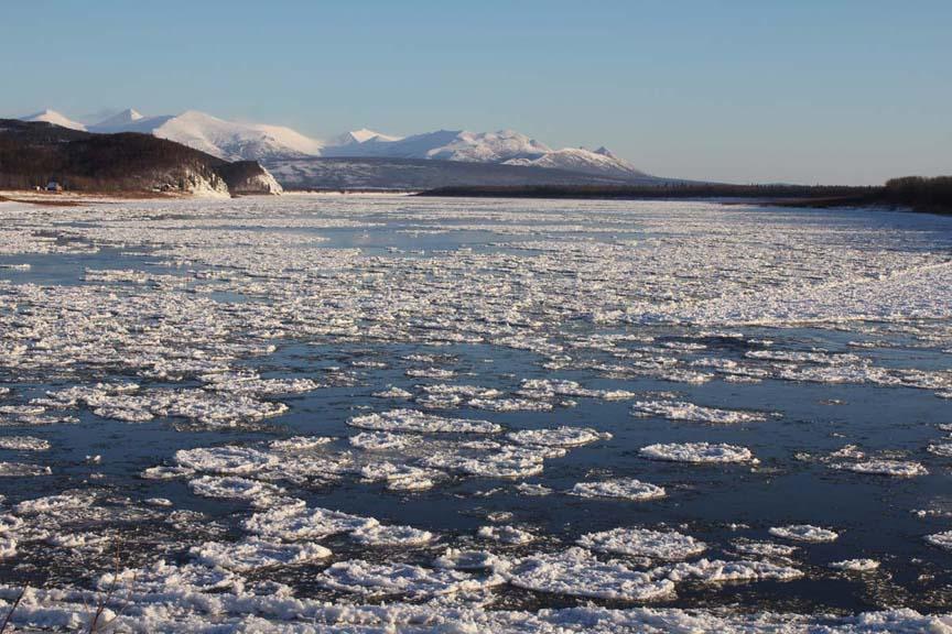 The Kuskokwim still passing ice