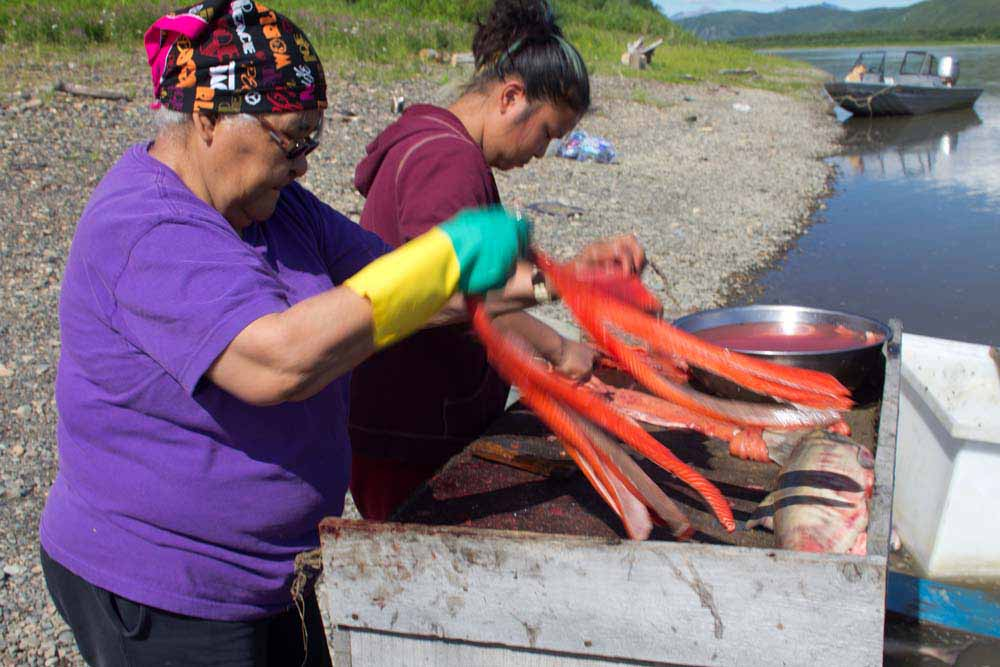 Nas Avakumof cutting salmon at her fish camp across from Napaimute
