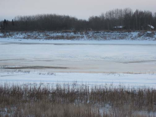 Thin ice and water on both sides of the slough.