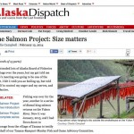 Very Interesting AK Dispatch Article - The Salmon Project:Size Matters