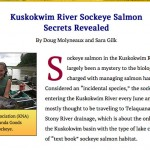 Interesting Sockeye Salmon Article From ADF&G Web Site