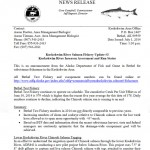 Latest News Release Information On Bethel Test Fish And Weir Projects