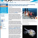 NOAA Study - Ocean Acidification Dissolving Tiny Snail Shells