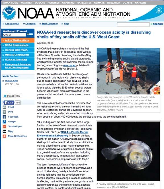 NOAAOceanAcidDissolvingSnailShellsPteropods