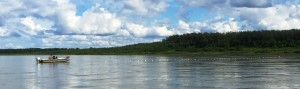 July 15th was the final day of the Aniak Test Fishery operated by NVN